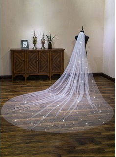 One-tier Cut Edge Cathedral Bridal Veils With Lace