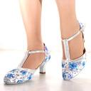Women's Mesh Heels Latin Dance Shoes