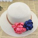 Ladies' Pretty Rattan Straw Straw Hat