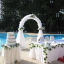 Hage Tema/Klassisk Tema Kunstig Silke Bryllup Dekorasjoner