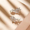Elegant Legering/Perle/Rhinestones øredobber For Henne