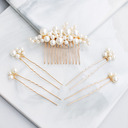 Ladies Imitation Pearls Combs & Barrettes (Set of 5)