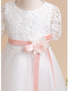 A-Line Knee-length Flower Girl Dress - Short Sleeves Scoop Neck With Lace/Sash/Flower(s) (Undetachable sash)
